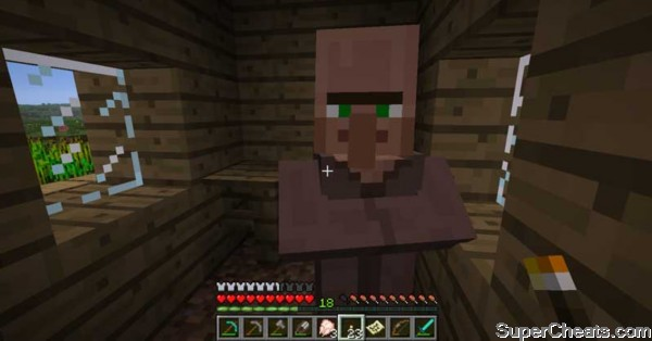 NPC Village - Minecraft