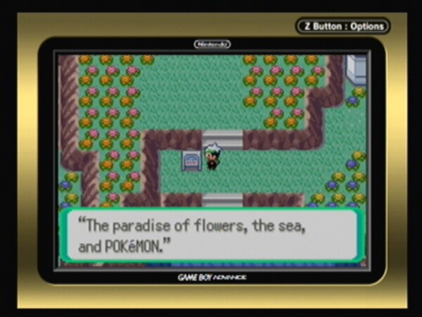 Pokemon emerald manual pdf