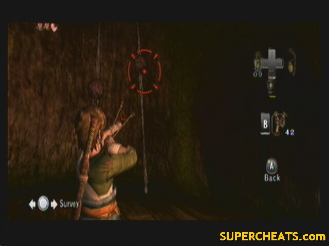 how to get the slingshot in twilight princess