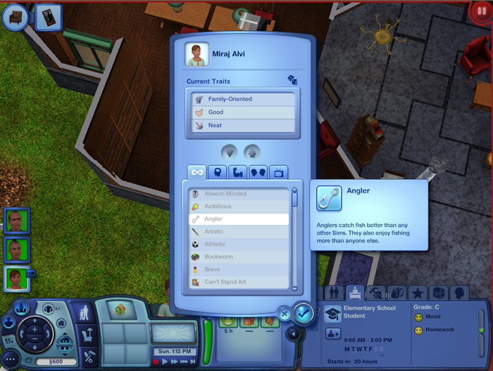 The Sims 3 Cheats, PC