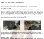 Grand Theft Auto 4 Guide