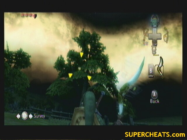 Heart Piece Location Guide The Legend Of Zelda Twilight Princess Guide And Walkthrough