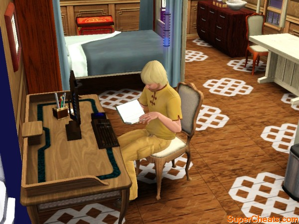 important guide and game notes the sims 3 ambitions guide. Black Bedroom Furniture Sets. Home Design Ideas