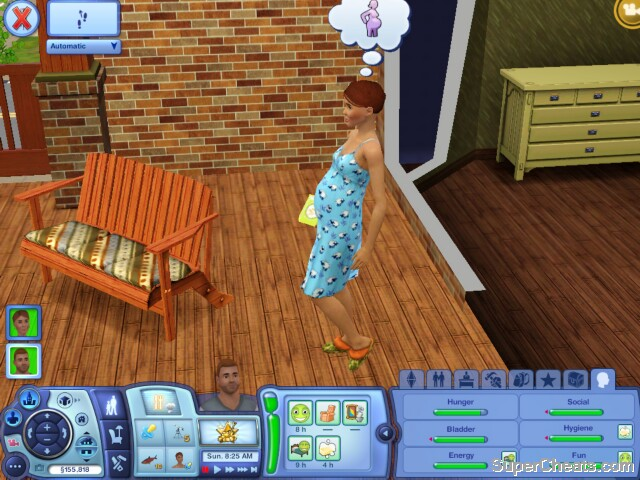 Families - The Sims 3 Guide